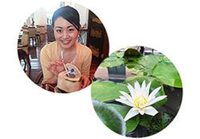 画像9: バンコクのおいしい!かわいい!の魅力とは?