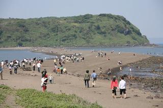 知林ケ島(ちりんがしま)