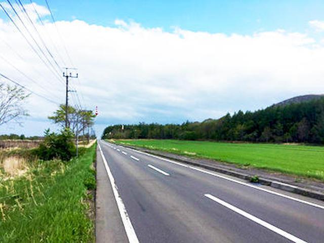 画像6: (北海道)大自然の中を駆け抜ける 弟子屈町「グランフォンド摩周」