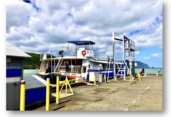 画像3: (ハワイ)現地スタッフが体験!~KBOS 天国の海®ツアー~