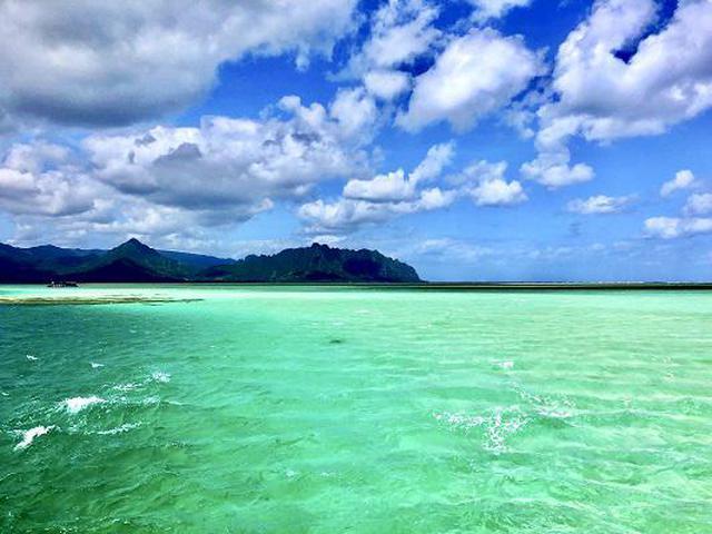 画像2: (ハワイ)現地スタッフが体験!~KBOS 天国の海®ツアー~