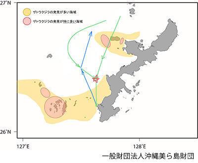 画像: ご協力ありがとうございます。到着時が緑色の線、北向きで出発時が青色の線です。