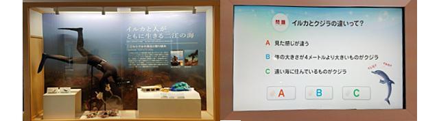 画像6: 道の駅 天草市イルカセンター