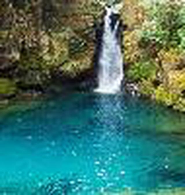 画像1: (高知)「奇跡の清流仁淀ブルーを体感!仁淀川エリアをレンタサイクルで周遊の軌跡」
