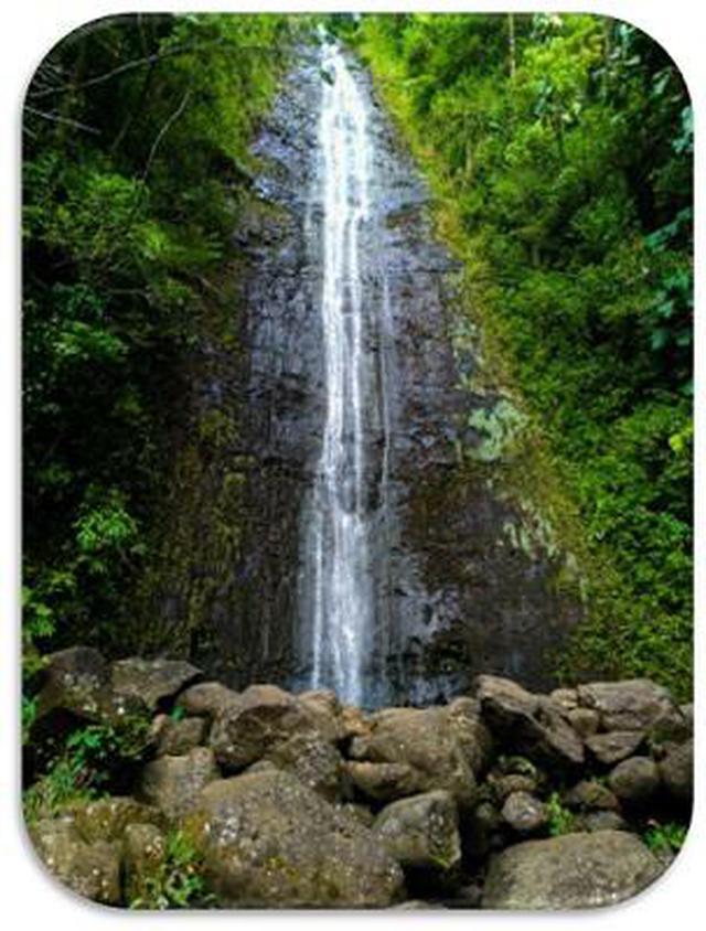 画像9: (ハワイ)現地スタッフが体験!~コオラウ山脈南東端の南側に広がる マノア・フォールズ~