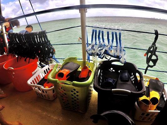 画像8: (ハワイ)現地スタッフが体験!~KBOS 天国の海®ツアー~