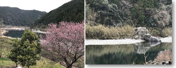 画像8: (高知)「奇跡の清流仁淀ブルーを体感!仁淀川エリアをレンタサイクルで周遊の軌跡」
