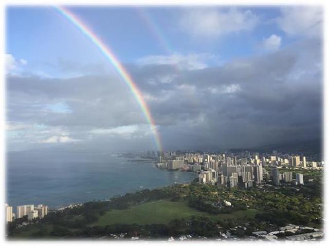 画像8: (ハワイ)~JALPAKレインボートロリー活用術~ ダイヤモンドヘッド早朝ハイキングとKCCファーマーズマーケット