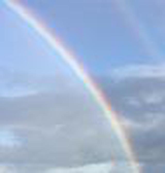 画像1: (ハワイ)~JALPAKレインボートロリー活用術~ ダイヤモンドヘッド早朝ハイキングとKCCファーマーズマーケット