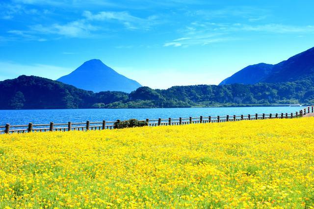 画像1: おもてなし日本一のマラソン大会『いぶすき菜の花マラソン』ってどんな大会?