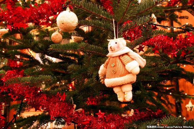 """画像1: フランスの""""クリスマスの都""""、ストラスブールへ"""