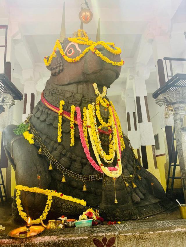 画像: 「ブル寺院」でヒンドゥー教徒のティラカをつけてもらおう