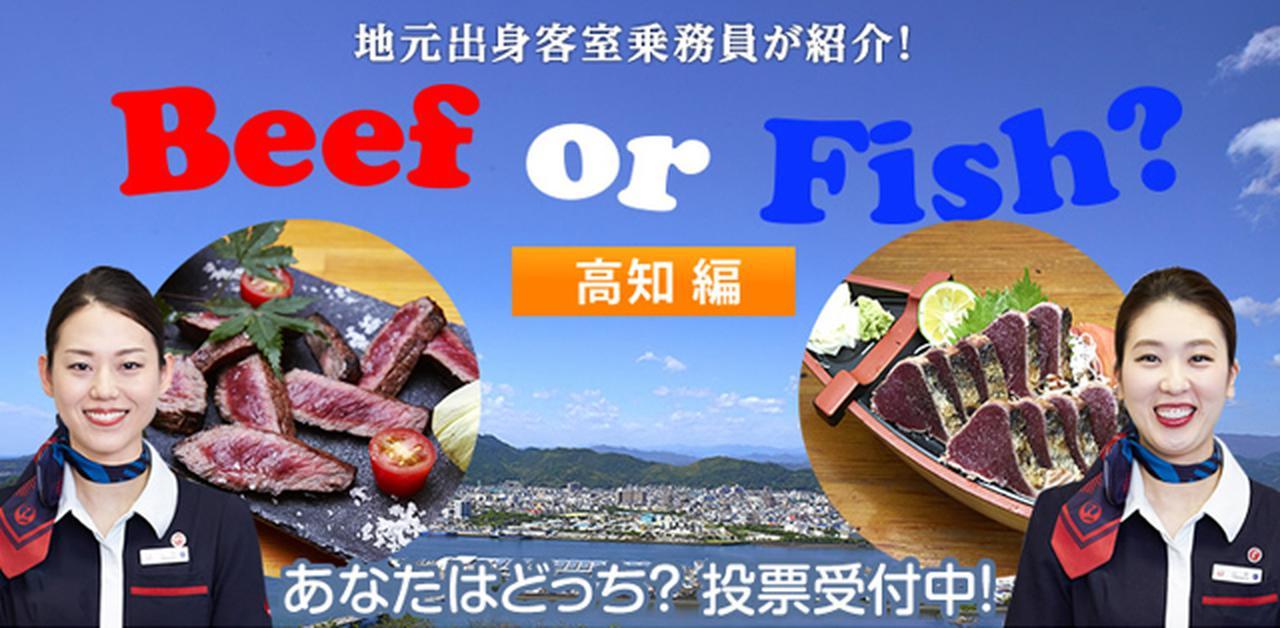 画像: 地元出身客室乗務員が紹介!Beef or Fish? Vol. 8 高知編
