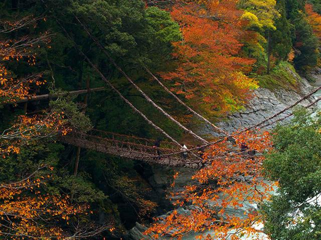 画像10: 徳島の伝統文化と自然風景に出会う旅
