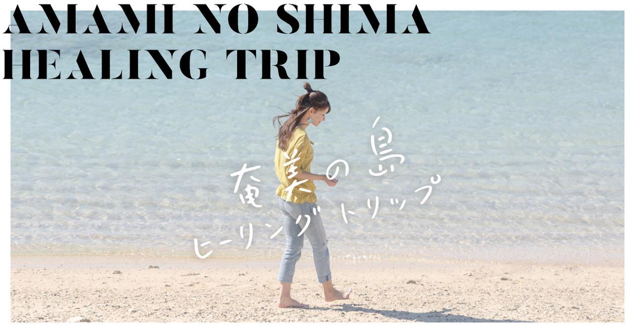 画像: 奄美の島ヒーリングトリップ!
