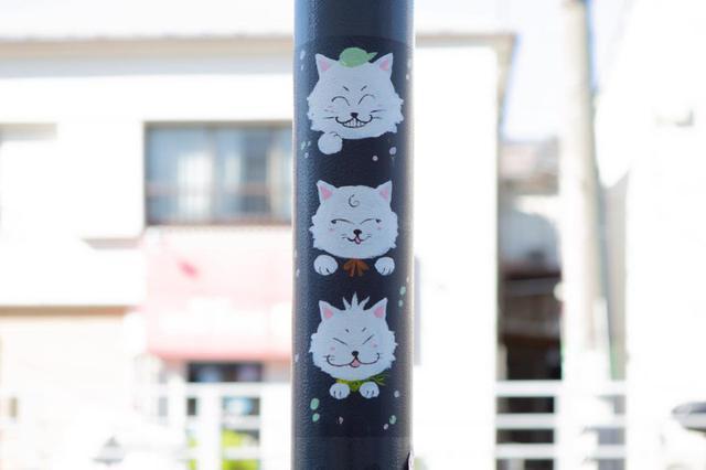 画像: 商店街を歩きながら、猫を探すのも楽しみのひとつ。