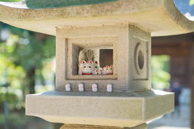 画像: 「たまにゃん祭り」&「沖縄祭り」。豪徳寺が盛り上がるお祭りにもご注目を