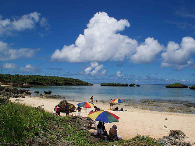 画像1: 西表島でしかできない夏旅へ!