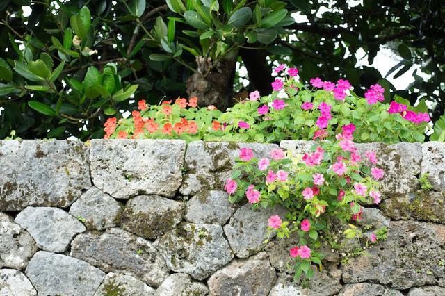 画像3: 沖縄県最古の民家「上江洲家(うえずけ)」で地元の人との触れ合う