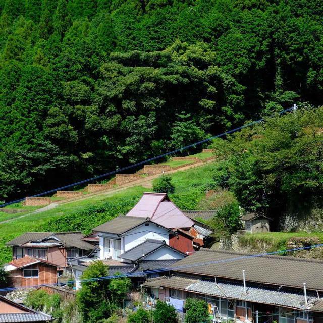 画像: 景色のいいベランダから、昔の巨大登り窯跡が見えました。中尾山は世界最大の登り窯跡もあり、江戸時代にも大量生産が可能でした。