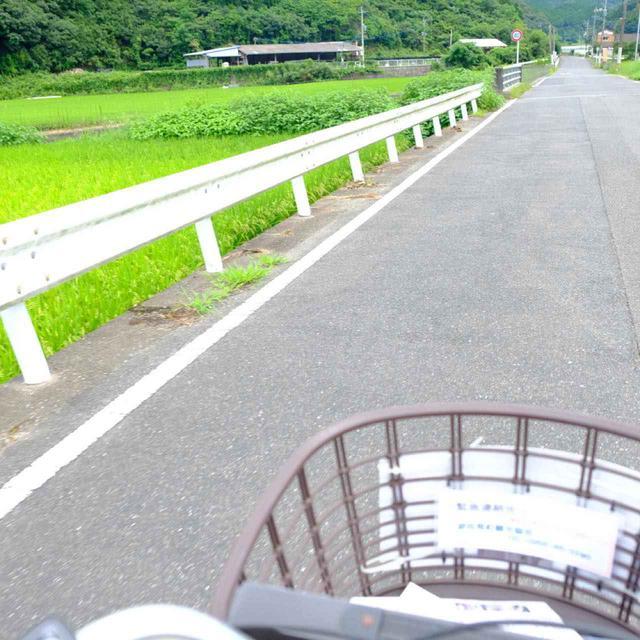画像: 道案内も多く道順はわかりやすいです。しかしお天気が良すぎて汗が止まらない… (笑)いよいよ中尾山です!