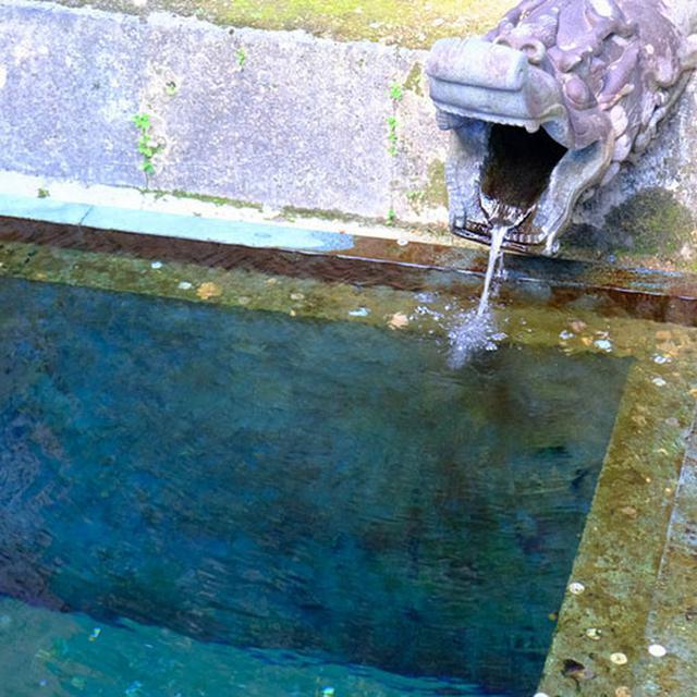 画像: こちらはその脇に湧き出す清水「龍樋」。とてもキレイでしたが飲水は不可。お城があるくらいなので、この辺りは湧き水も豊富であったのではないでしょうか。