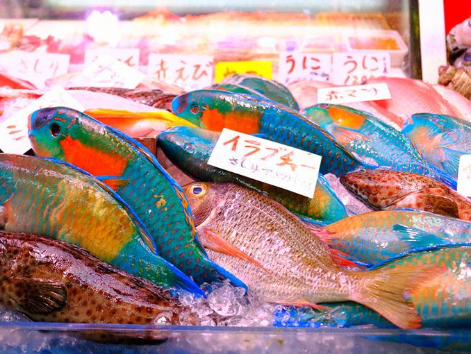 画像: 青いお魚はイラブチャー。購入して調理してもらうこともできます。
