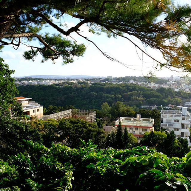画像: 上りきると高いところにいるなぁーってわかります。首里城はすぐそこ。やはりお城は高いところにあるんですね!