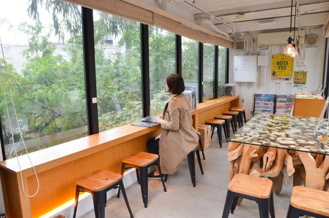 画像3: 庭を見ながらゆっくり過ごせる「そら植物園インフォメーションセンター&カフェ」