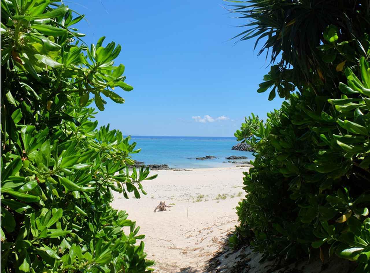 画像: オフシーズンが狙い目。奄美群島の絶景、洞窟、パワースポット