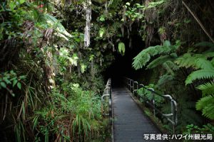 画像: ハワイ火山国立公園