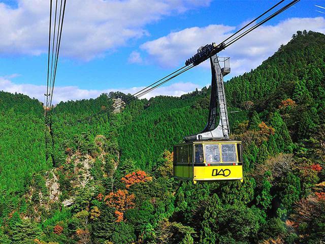 画像: 「東阿波」を巡る徳島の自然、文化、グルメを満喫する欲張りプラン