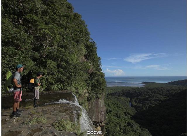 画像: 西表島でしかできない夏旅へ!
