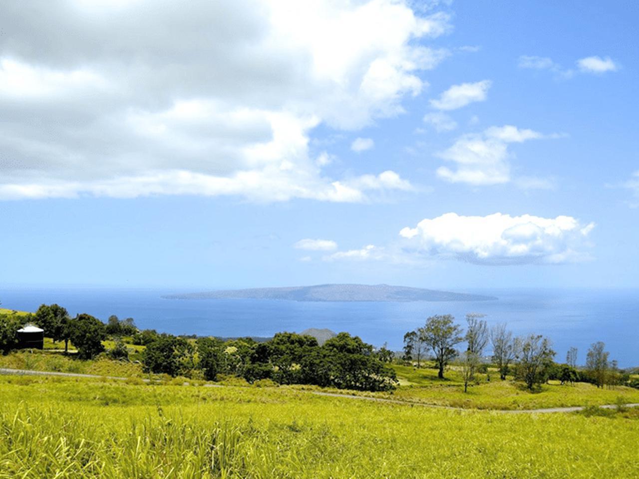 画像: マウイ島・アップカントリー・タウン 体が美しくなる食を堪能する旅へ