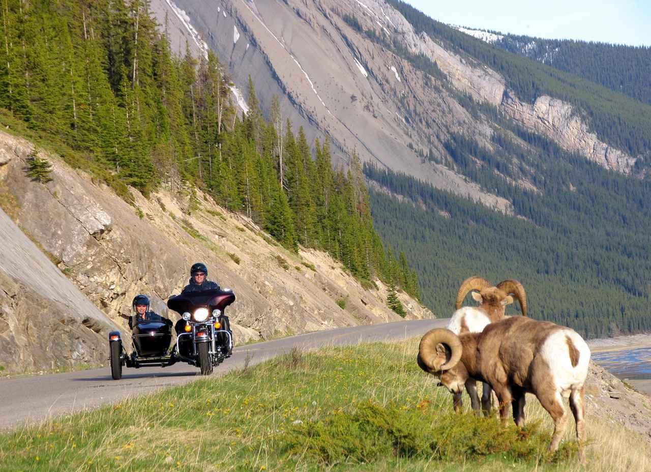 画像: 写真提供:Jasper Motorcycle Tours/カナダ観光局
