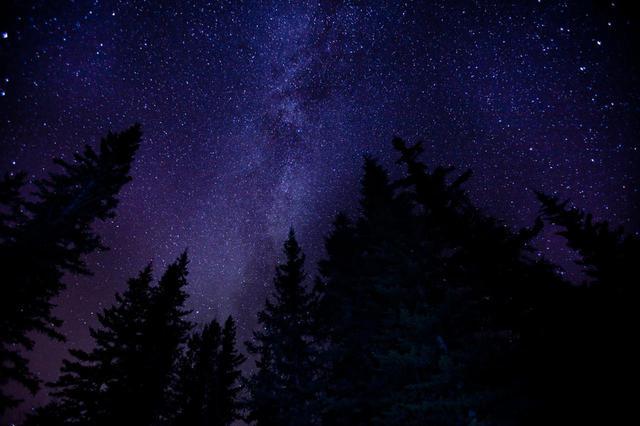 画像: 写真提供:Tourism Jasper/BrayR/カナダ観光局