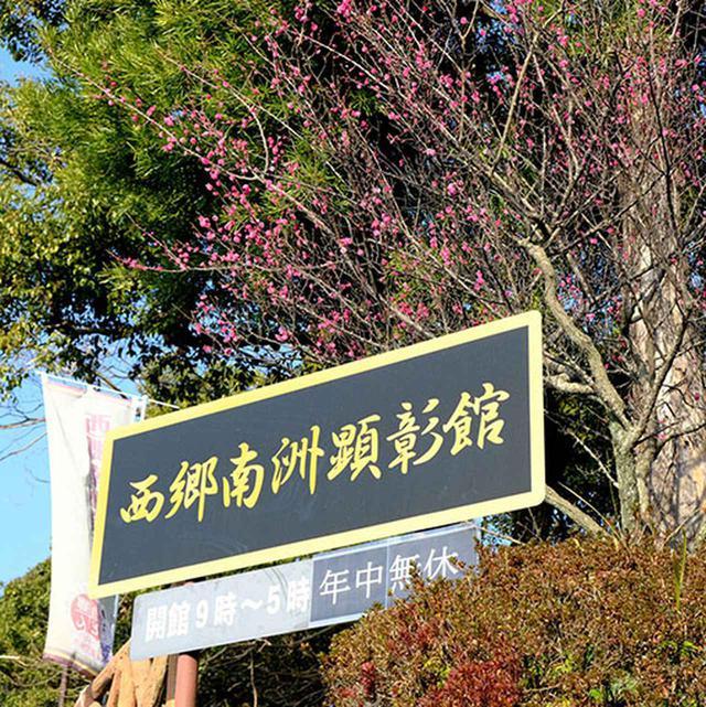 画像: 最初の目的地は西郷隆盛のお墓のある「南洲墓地」。ここに行くまでには西郷最後の場所となった「西郷洞窟」や「城山」バス停があります。
