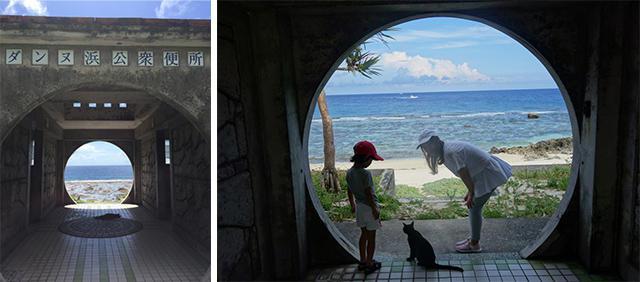 画像4: 「与那国島」の最新アクティビティをご紹介