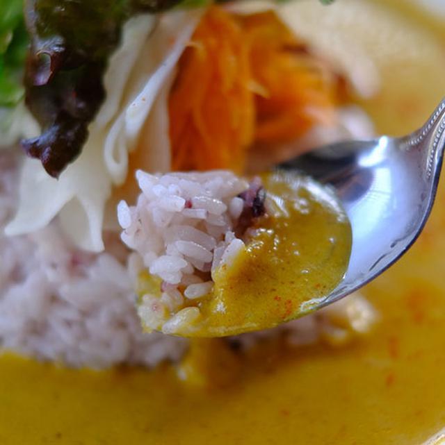 画像: かぼちゃ入りのココナッツベースカレー。かぼちゃが濃度を感じさせるマイルドなルー。