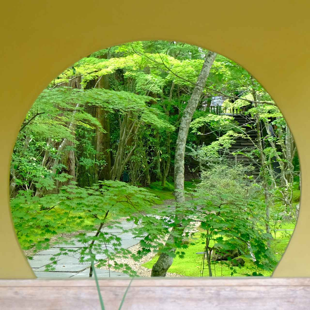 画像: 丸窓の奥に続く緑の小径。ここからは苔の庭となります。
