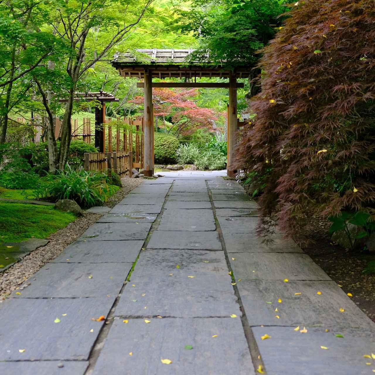 画像: 山門をくぐり入ったところからもう素敵。この庭は遠州流であるということで、入る前から楽しみ。小堀遠州は全国に庭を残している当時の超人気庭師。本当に引っ張りだこだったんですね。