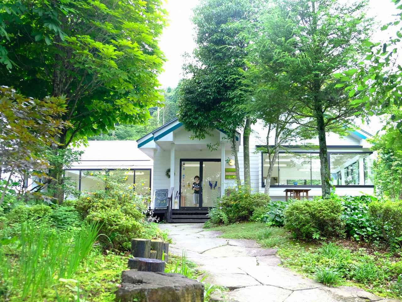 画像: 宮城県出身の鍋田さんはギャラリーを構えるにあたり、秋保の地を選びました。秋保大滝からすぐ近くという立地で、観光がてら立ち寄るお客さんも多いとのこと。木々に囲まれた美しい工房です。