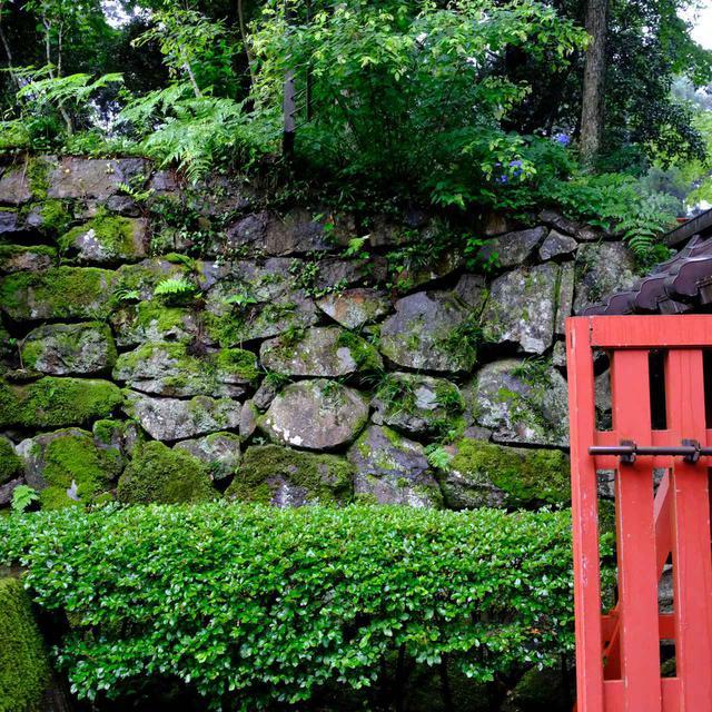 画像: 石垣も大変趣があります。雨のおかげで風景が色濃くなり、より厳かな雰囲気に感じられました。
