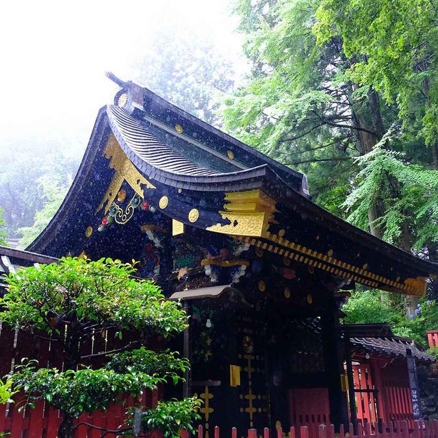画像: 瑞鳳殿手前にあるのが「涅槃門」。ここからすでに風格が漂っています。雨がひどかった時間帯です…。