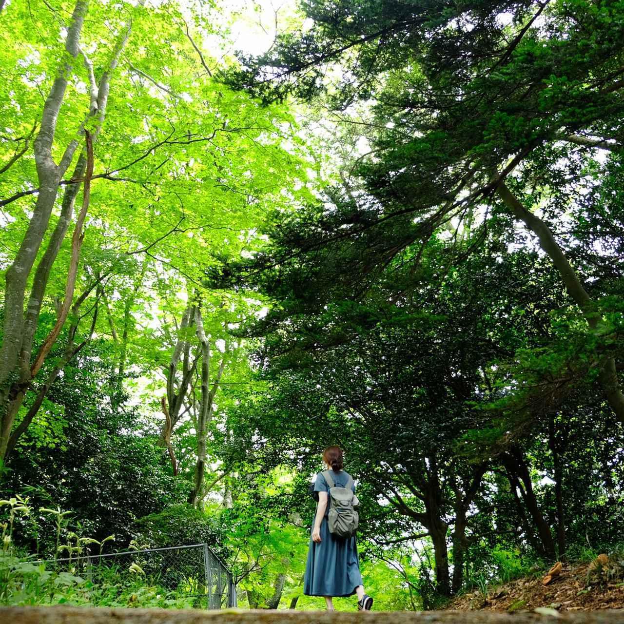 画像: 松島エリアは観光客で結構混みあっているのですが、ここ福浦島はとっても静か。遠くから聞こえる汽笛がなんだかロマンチック…。