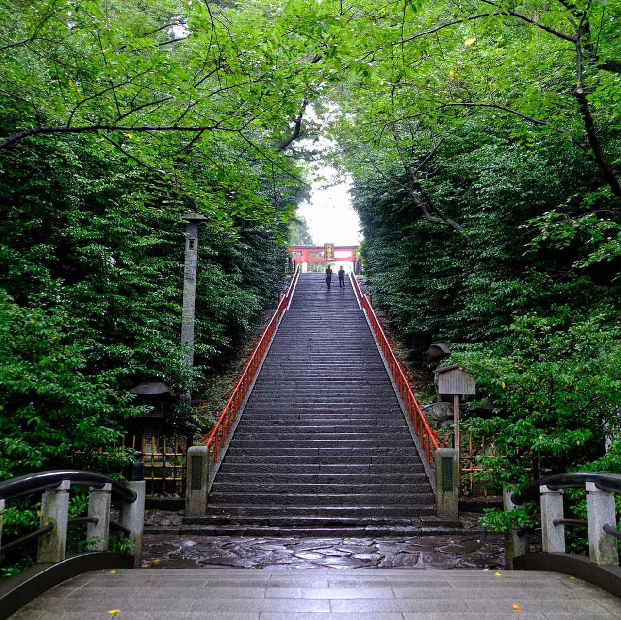 画像: 二の鳥居をくぐると目のまえには大石段。98段とも100段とも言われる階段は創建当時のまま。