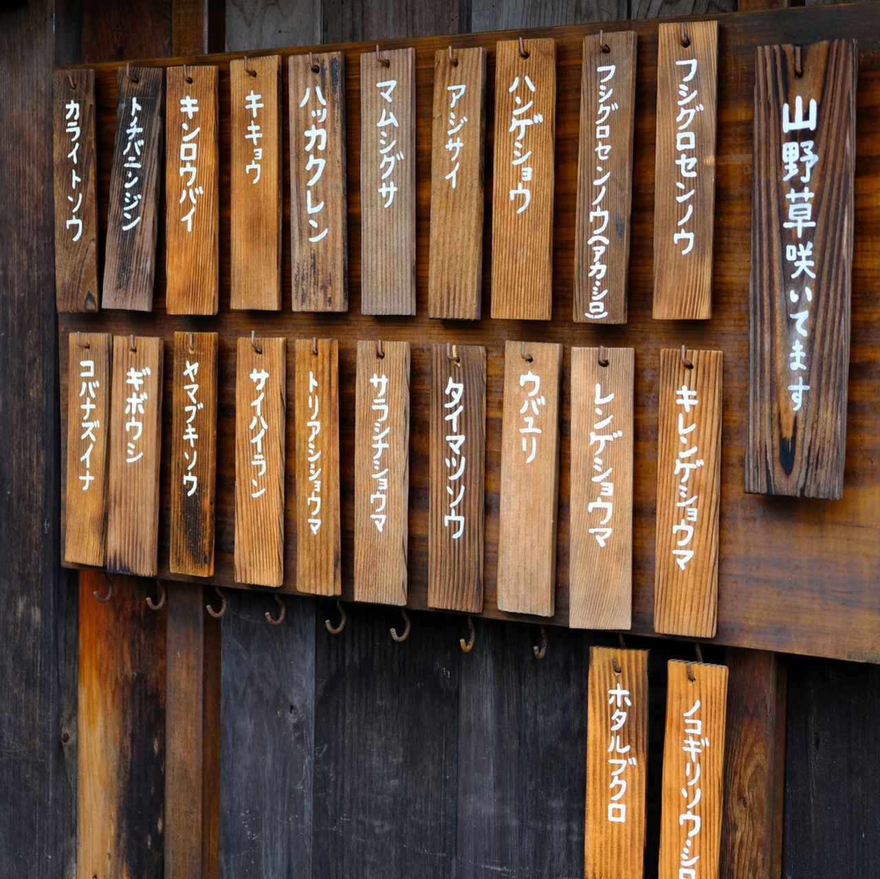 画像: こちらのお寺の入口には見ごろを迎える植物の札が掛けられていました。こういう心遣いは素晴らしいですね。