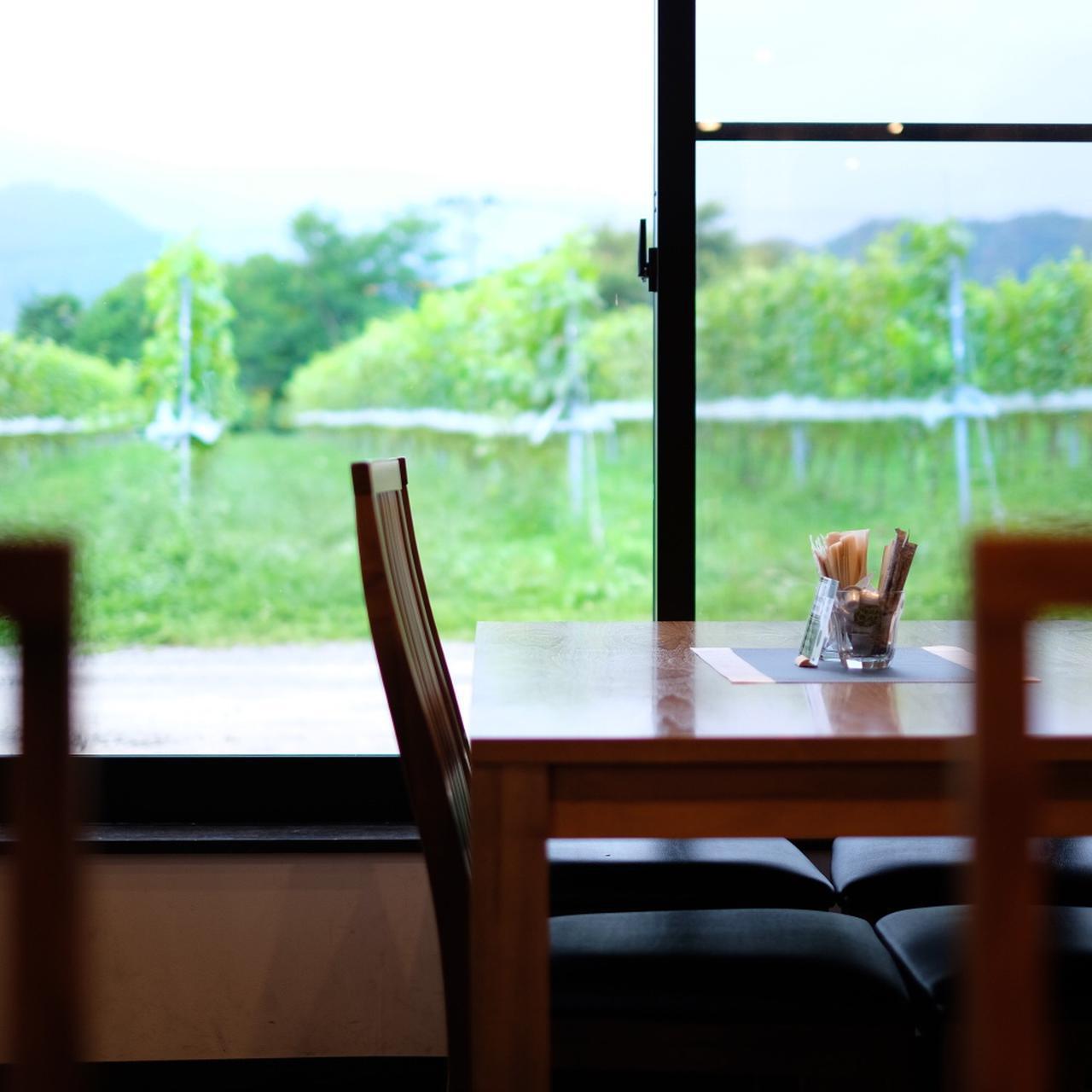 画像: すぐ目の前はぶどう畑。窓を開ければ手が届きそうなほど畑に近いです。ぶどうは、摘みたてをそのまま工場へ。栽培、醸造、熟成、瓶詰をすべてこの場所で行っています。