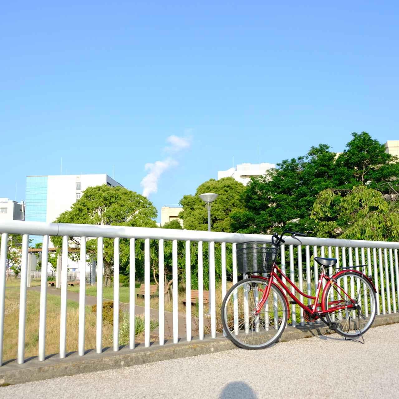 画像: 市内に点在する彫刻を自転車で美術鑑賞してみました。固まって展示されていたり、幹線道路沿いにあったりするのでわかりやすく、徒歩で見て回ることも可能です。