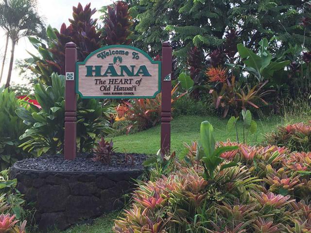 画像11: 現地スタッフが体験!~マウイ島の自然を満喫~